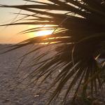 Pointe Estero Resort Foto
