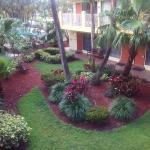 BEST WESTERN PLUS University Inn Foto