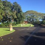 Holualoa Inn ภาพถ่าย