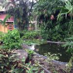 Hotel Flying Crocodile Foto