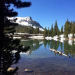 Gull Lake Lodge Foto