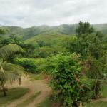 Photo de Teitei Permaculture Farm