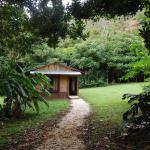 Foto de Cataratas Bijagua Lodge