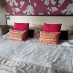 Photo de Hotel Myrtilles