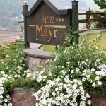 Hotel Mayr Estate