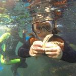 Conociendo la flora y fauna subacuatica con los mejores guias.