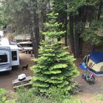 Rimrock Lake Resort...spot 24/23