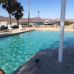 Photo de Havasu Springs Resort