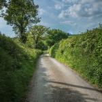 Devon lane leading to Catsheys