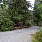 Photo of Glendavan House