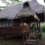 Foto de Wasai Tambopata Lodge