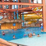 Bamboozle Pool