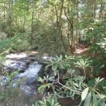 Foto de Tiger Creek Falls Inn