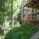 Foto de Tiger Creek Falls Inn