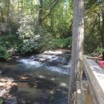 Tiger Creek Falls Inn Foto