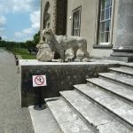 Stone lion guards the steps