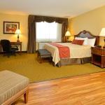 Foto de BEST WESTERN PLUS Dubuque Hotel & Conference Center