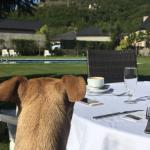 Zona de desayuno al aire libre