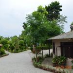 Zdjęcie Jungle Nepal Resort