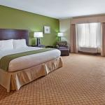 Single King Bed Room Holiday Inn Express Columbus-Fort Benning