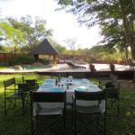 Photo de nDzuti Safari Camp