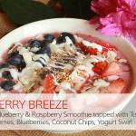 Wild berry Fresh Fruit Smoothie Bowl