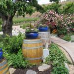Hillside Winery and Bistro Foto