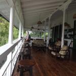 Viewing balcony at Asa Wright