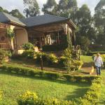 Photo of Silverback Lodge
