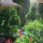 Vue de la terrasse d'un des gîtes des Jardins de l'Espérance