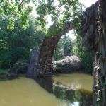 Muskauer Park Foto