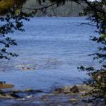 Settlers Cove State Recreational Site Foto