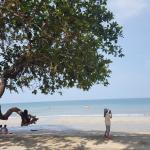 Photo de Banpu Koh Chang Resort