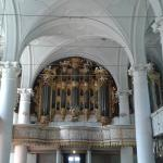il famoso organo