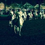 Horse riders, great show