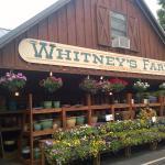 Whitney's Farm Stand