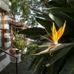 Melvin Residence Guest House Foto