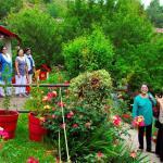 Walk to the rooms through lush gardens