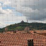 La rete per piccioni ostacola la vista del panorama