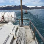 Zodiac escort and liferaft. Reassuring on an amphibious vehicle