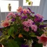 i fiori di Ettore