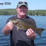 Bass May 2016