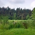 Photo de Parc des Gayeulles