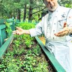 Inn Keeper by the Herb Garden
