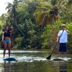Stand Up Paddling on the Anahulu Stream