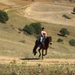 Lovely Gallop over fabulous country side