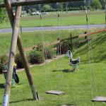 swings in the front lawn