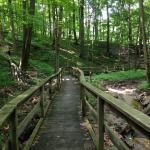 Hudsonville Nature Center