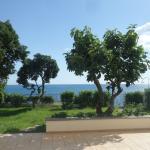 Photo of B&B Villa Addaura