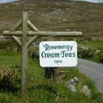 Photo of Rosemergy Farmhouse Cream Teas